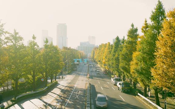 <穿梭在城市的公路上,高清壁纸,图片,时光记忆