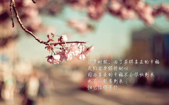 <追求幸福,高清壁纸,图片,时光记忆